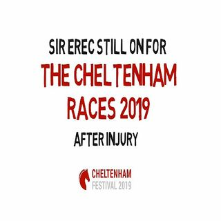 Sir Erec Still On For The Cheltenham Races 2019 After Injury