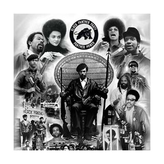 The Black Panthers vs NWA