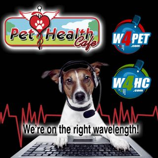 Pet Mental Health Disease Alert