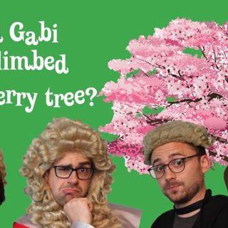 Should Gabi have climbed the cherry blossom tree?
