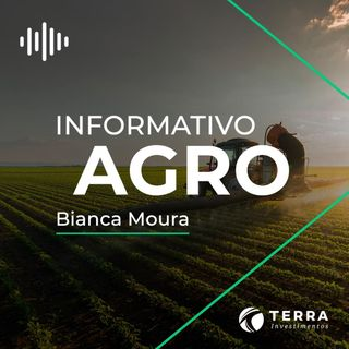 Informativo Agro