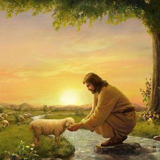 BIBLIA Y CATECISMO (Miércoles 28 de Abril)
