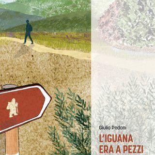 "Giulio Pedani ""L'iguana era a pezzi"""