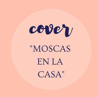 Moscas en la Casa- Shakira (COVER Alejandra )