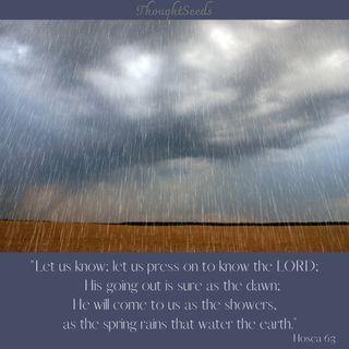 Episode 176: Rain, Part 1