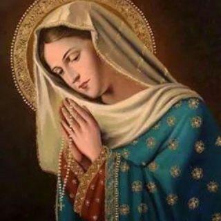 Episodio 5 - Celebrazione Eucaristica quotidiana