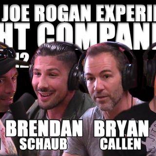 Fight Companion - March 12, 2017