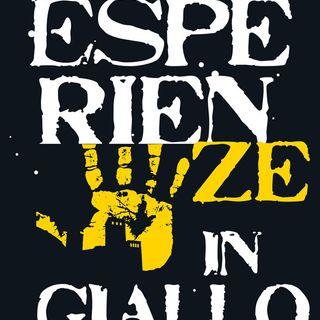 """Enrico Serafini """"Esperienze in Giallo"""""""