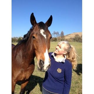 Horses can take you on a journey to your inner self touching all emotions