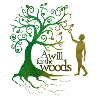 GD Feature: A Will for the Woods