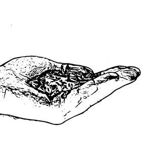 'Strømninger': Kage med melorm og andre bæredygtige insektsnacks