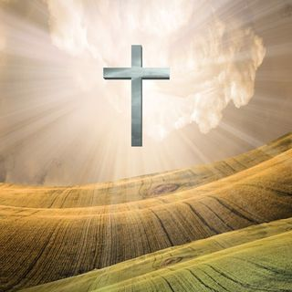 The Big Question - If God is real why doesn't he stop our suffering? Famine, Wars, Disease etc