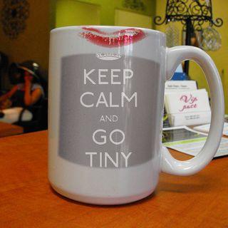 The Mandated Instructions I Recieved  to.... Go Tiny!