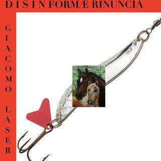 DISINFORMA E RINUNCIA (gruppo)