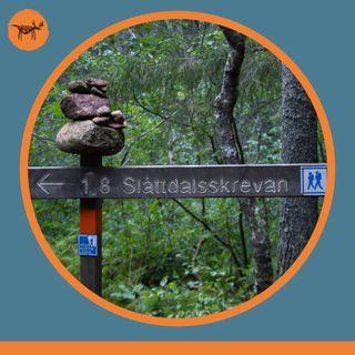 #022 Skuleskogen - Park Narodowy w sercu Höga Kusten