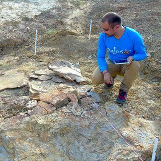 La tortuga más grande del mundo vivió en Colombia