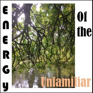 Energy of the Unfamiliar