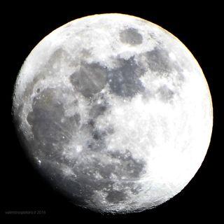 1309 Cronache dalla Luna in tv e online