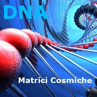 DNA, questo sconosciuto