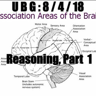 The Unpleasant Blind Guy : 8/4/18 - Reasoning, Part  1