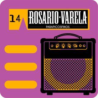 El Amply 14 - Promotores musicales granadinos en el Rosario Valera