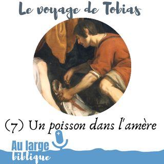 #164 Le voyage de Tobias (7) Un poisson dans l'amère