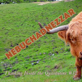 Nebuchadnezzar (Thinking Inside the Quarantine #12)