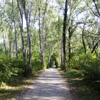 La pista ciclabile del Brenta
