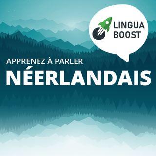 Apprendre le néerlandais avec LinguaBoost