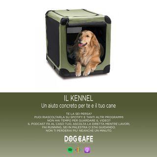 #042 - Il KENNEL: un aiuto concreto per te e il tuo cane