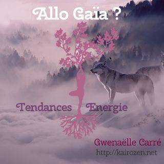 Allo Gaïa - Pleine Lune du 22 décembre 2018 La philosophie du jardinier et le travail des racines