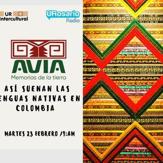 Así suenan las lenguas nativas en Colombia