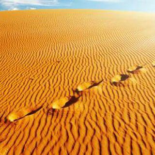 Attraverso Il Deserto