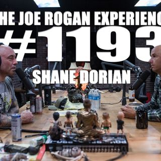#1193 - Shane Dorian