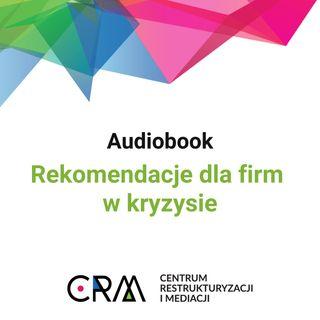 Rekomendacje dla firm w kryzysie - odcinek 1