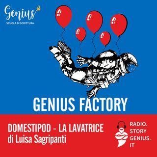 """Domestipod - La lavatrice"" di Luisa Sagripanti"