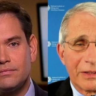 Episode 486: VIDEO MORNING JOE COMMUNIST DEMOCRAT PROPAGANDIST AND BOOT LICKER GOES AFTER REPUBLICAN SENATOR MARCO RUBIO FOR SAYING DR FAUCI