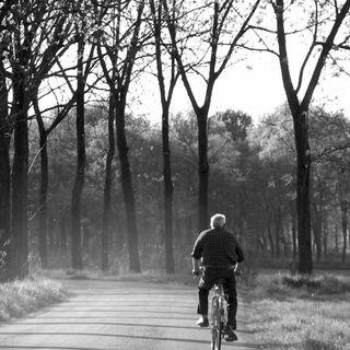 La gent in bicicleta