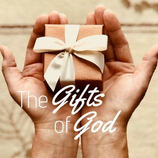 Da Gesú viene ogni bel dono perfetto