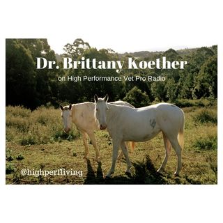 Dr. Brittany Koether Talks about the Life of a Recent Graduate