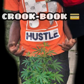 CROOK BOOK 📖 ✔