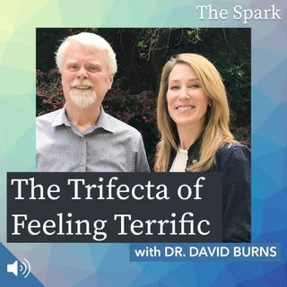 The Spark 035: The Trifecta of Feeling Terrific with Dr. David Burns