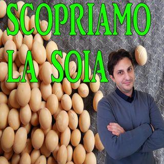 Episodio 100 - INTRODUZIONE ALLA SOIA - Un legume dalle mille proprietà'