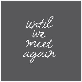 Until We Meet Again (Again)