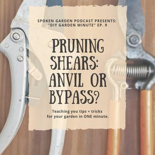 DIY Garden Minute Ep9 Anvil vs Bypass Pruning Shears