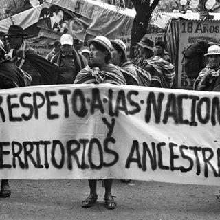 ¡Por favor! Detengan el genocidio indígena