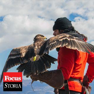 L'antica arte della falconeria, patrimonio dell'umanità