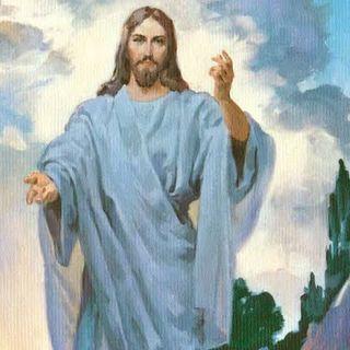 Un solo pastore (Gv 10,11-18)