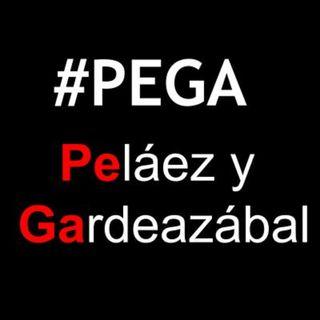 #PEGA peláez y gardeazábal,nov15