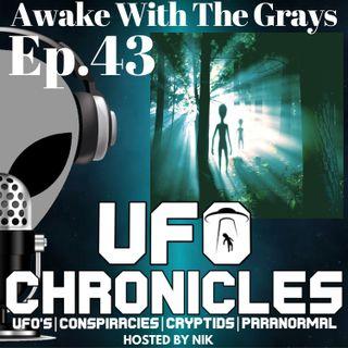 Ep.43 Awake With The Grays